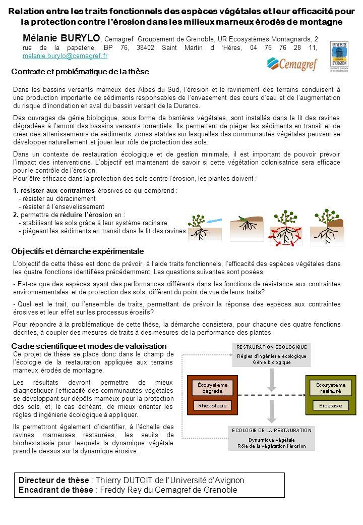 Relation entre les traits fonctionnels des espèces végétales et leur efficacité pour la protection contre lérosion dans les milieux marneux érodés de