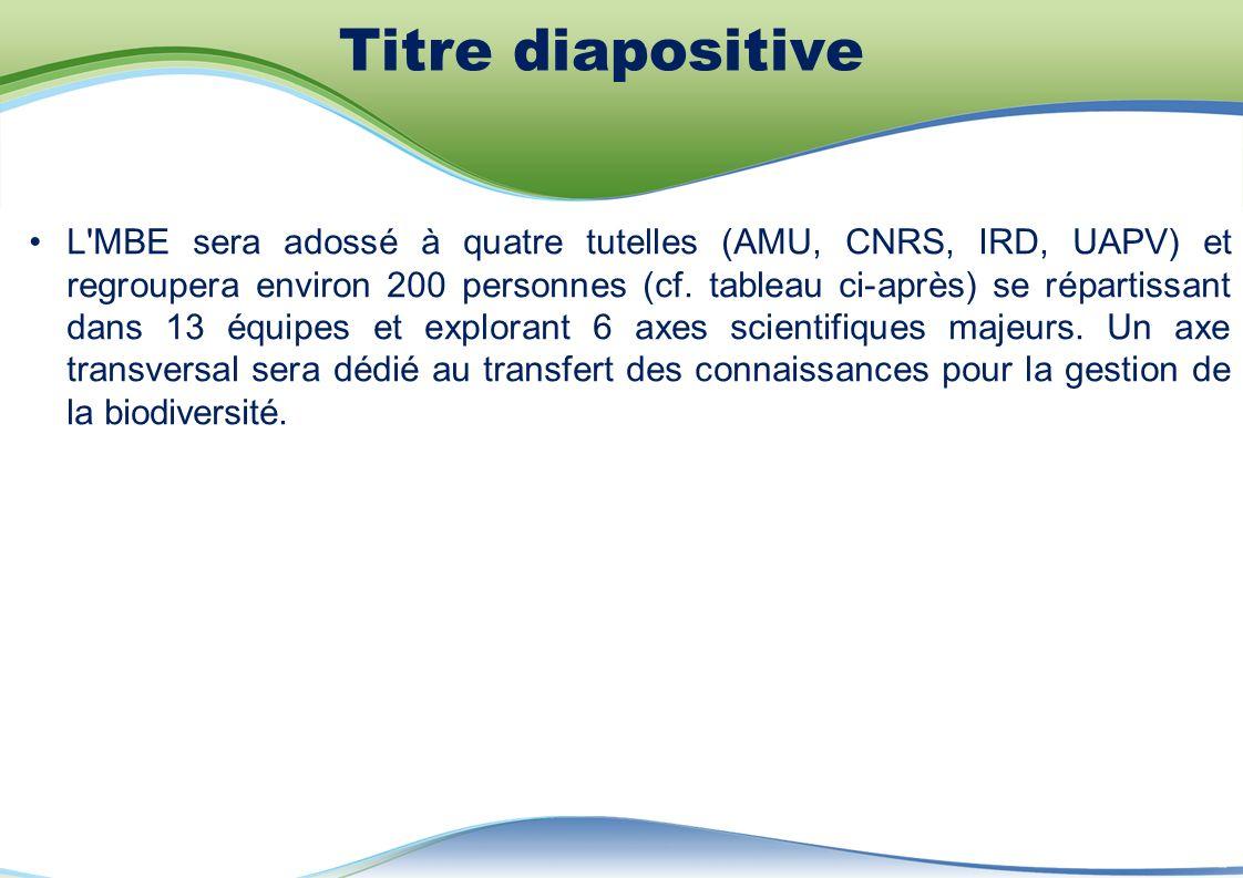 L MBE sera adossé à quatre tutelles (AMU, CNRS, IRD, UAPV) et regroupera environ 200 personnes (cf.