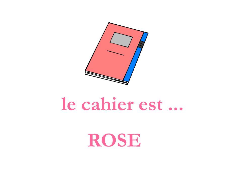 le cahier est... ROSE
