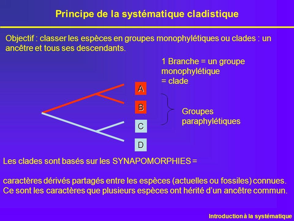 Objectif : classer les espèces en groupes monophylétiques ou clades : un ancêtre et tous ses descendants.AB C D Groupes paraphylétiques Principe de la