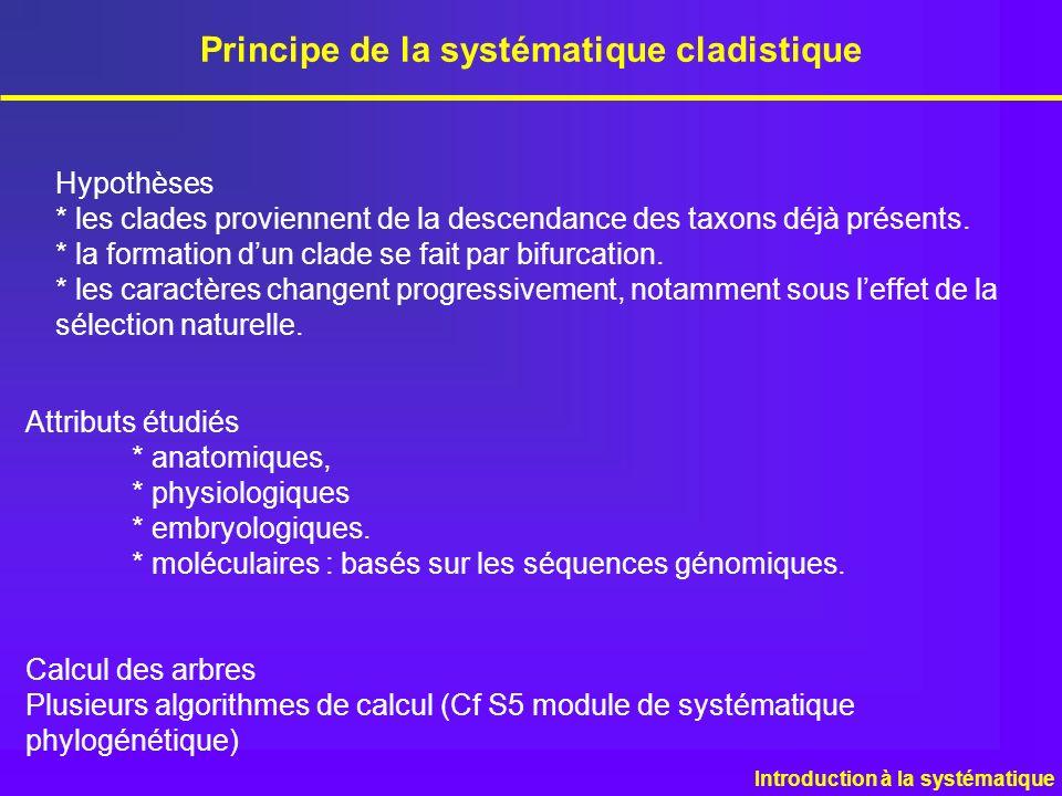 Hypothèses * les clades proviennent de la descendance des taxons déjà présents. * la formation dun clade se fait par bifurcation. * les caractères cha