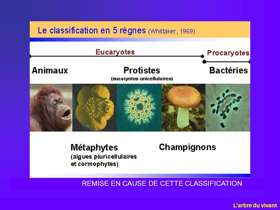 REMISE EN CAUSE DE CETTE CLASSIFICATION