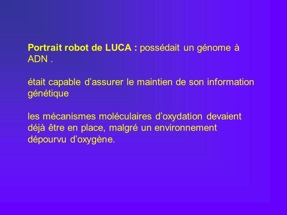 Portrait robot de LUCA : possédait un génome à ADN. était capable dassurer le maintien de son information génétique les mécanismes moléculaires doxyda