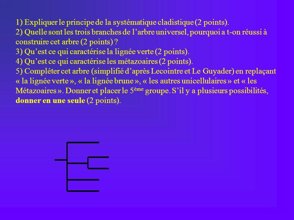 1) Expliquer le principe de la systématique cladistique (2 points). 2) Quelle sont les trois branches de larbre universel, pourquoi a t-on réussi à co