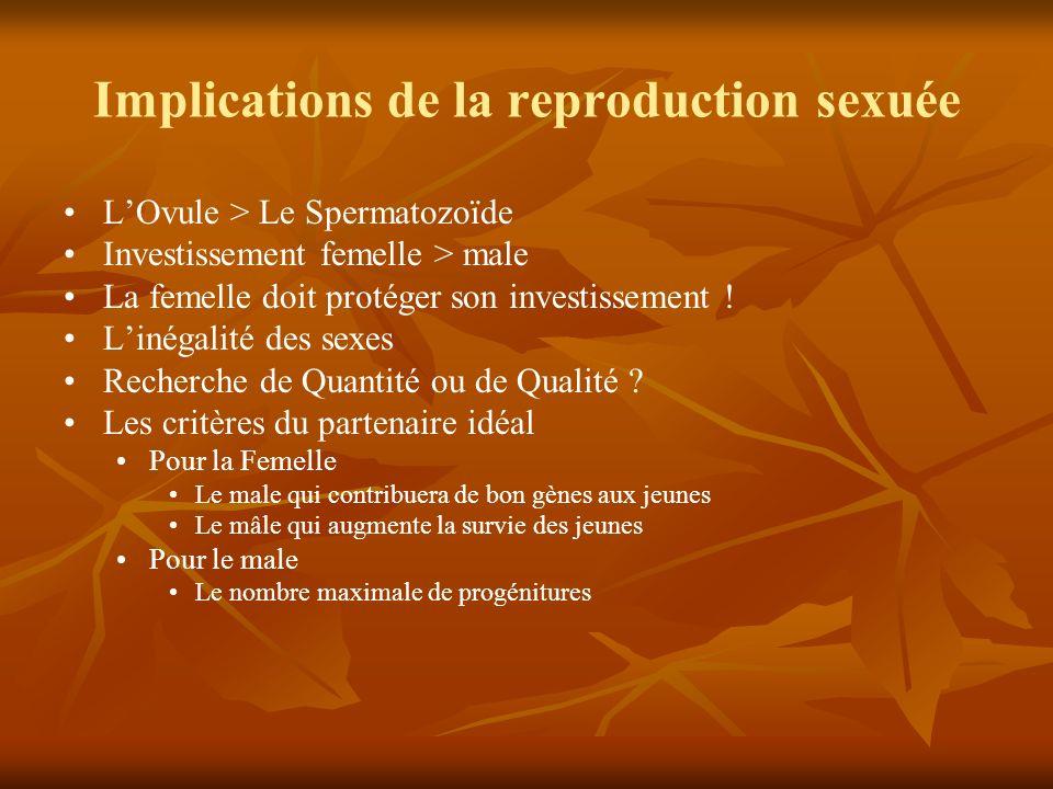 Implications de la reproduction sexuée LOvule > Le Spermatozoïde Investissement femelle > male La femelle doit protéger son investissement ! Linégalit