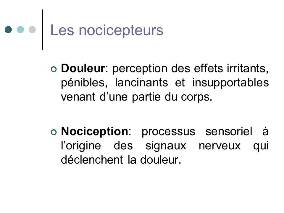Les nocicepteurs Douleur: perception des effets irritants, pénibles, lancinants et insupportables venant dune partie du corps. Nociception: processus