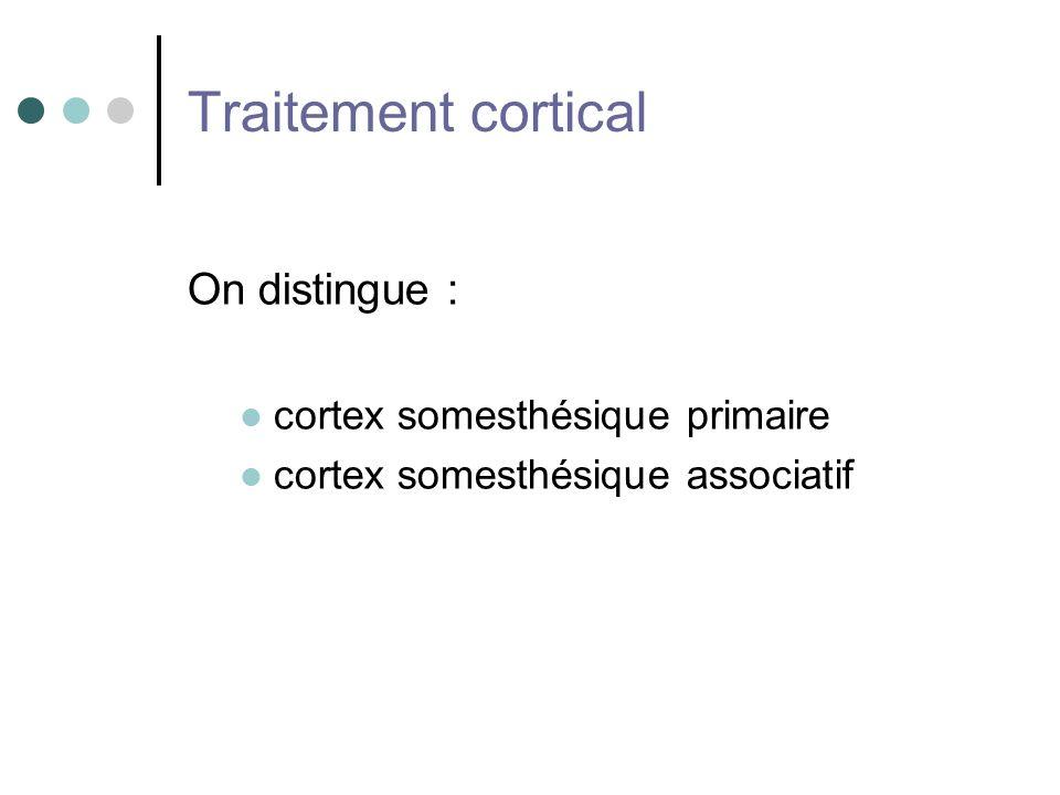 Traitement cortical On distingue : cortex somesthésique primaire cortex somesthésique associatif