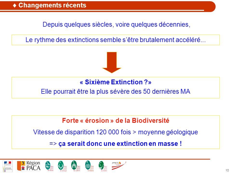 10 Le rythme des extinctions semble sêtre brutalement accéléré... Forte « érosion » de la Biodiversité Vitesse de disparition 120 000 fois > moyenne g