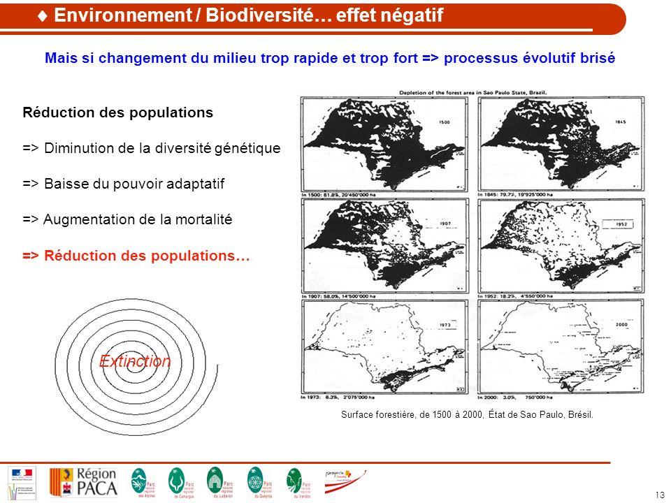 13 Surface forestière, de 1500 à 2000, État de Sao Paulo, Brésil. Extinction Mais si changement du milieu trop rapide et trop fort => processus évolut