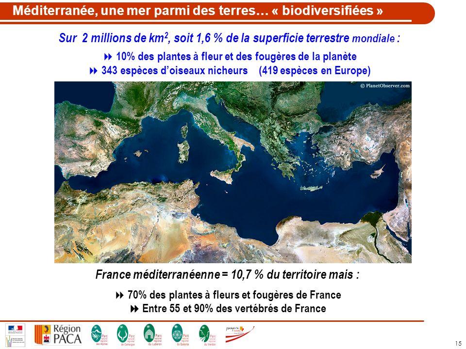 15 Méditerranée, une mer parmi des terres… « biodiversifiées » Sur 2 millions de km 2, soit 1,6 % de la superficie terrestre mondiale : 10% des plante