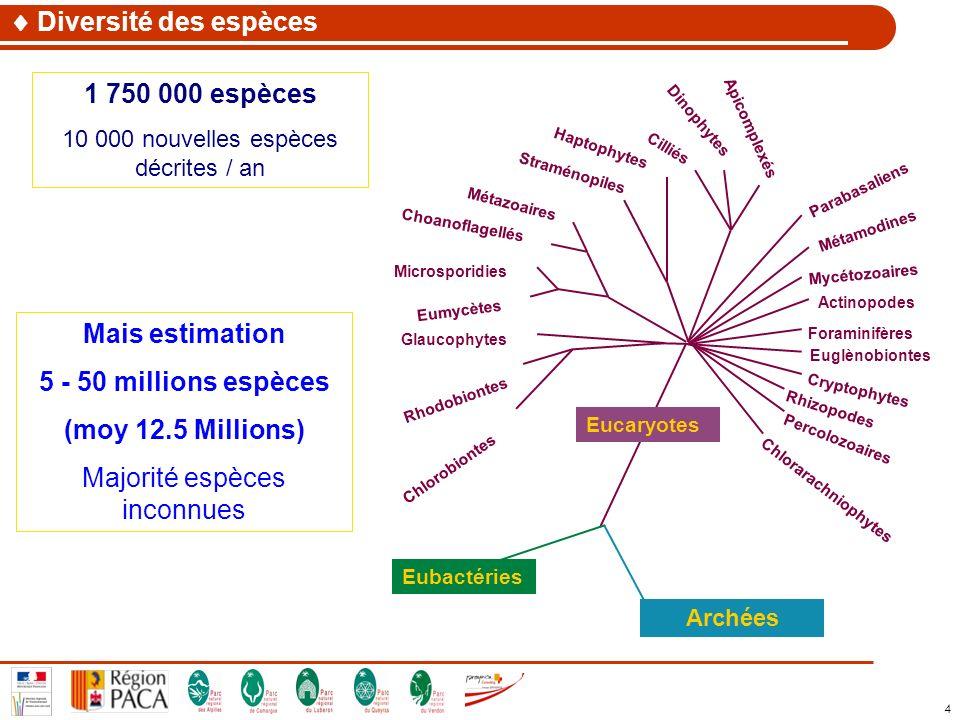 4 1 750 000 espèces 10 000 nouvelles espèces décrites / an Diversité des espèces Mais estimation 5 - 50 millions espèces (moy 12.5 Millions) Majorité