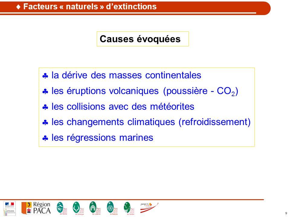 9 la dérive des masses continentales les éruptions volcaniques (poussière - CO 2 ) les collisions avec des météorites les changements climatiques (ref