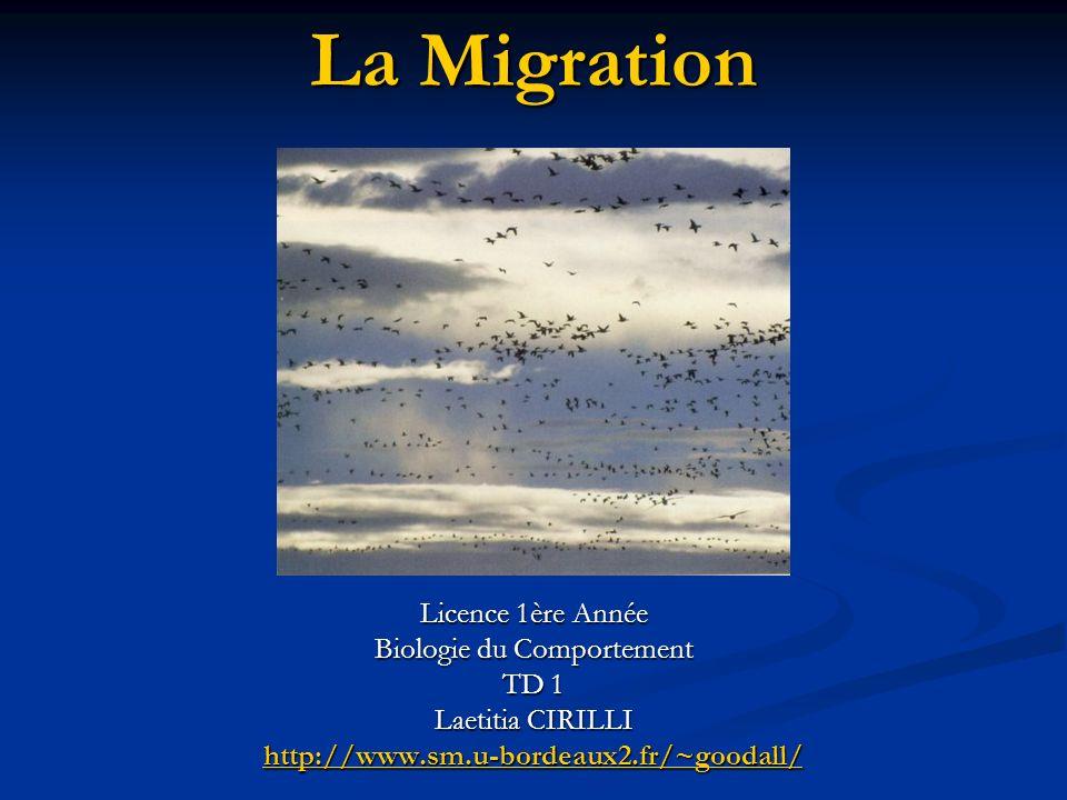 La Migration Licence 1ère Année Biologie du Comportement TD 1 Laetitia CIRILLI http://www.sm.u-bordeaux2.fr/~goodall/