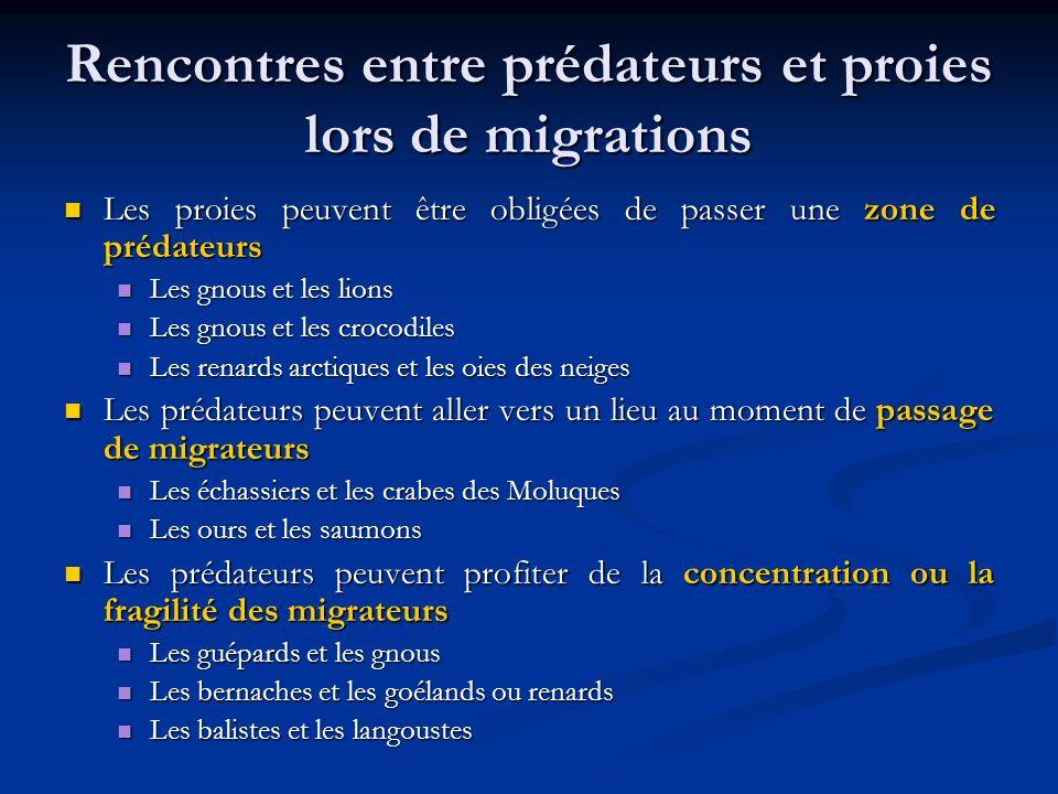 Rencontres entre prédateurs et proies lors de migrations Les proies peuvent être obligées de passer une zone de prédateurs Les proies peuvent être obl