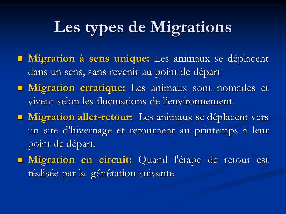 Les types de Migrations Migration à sens unique: Les animaux se déplacent dans un sens, sans revenir au point de départ Migration à sens unique: Les a