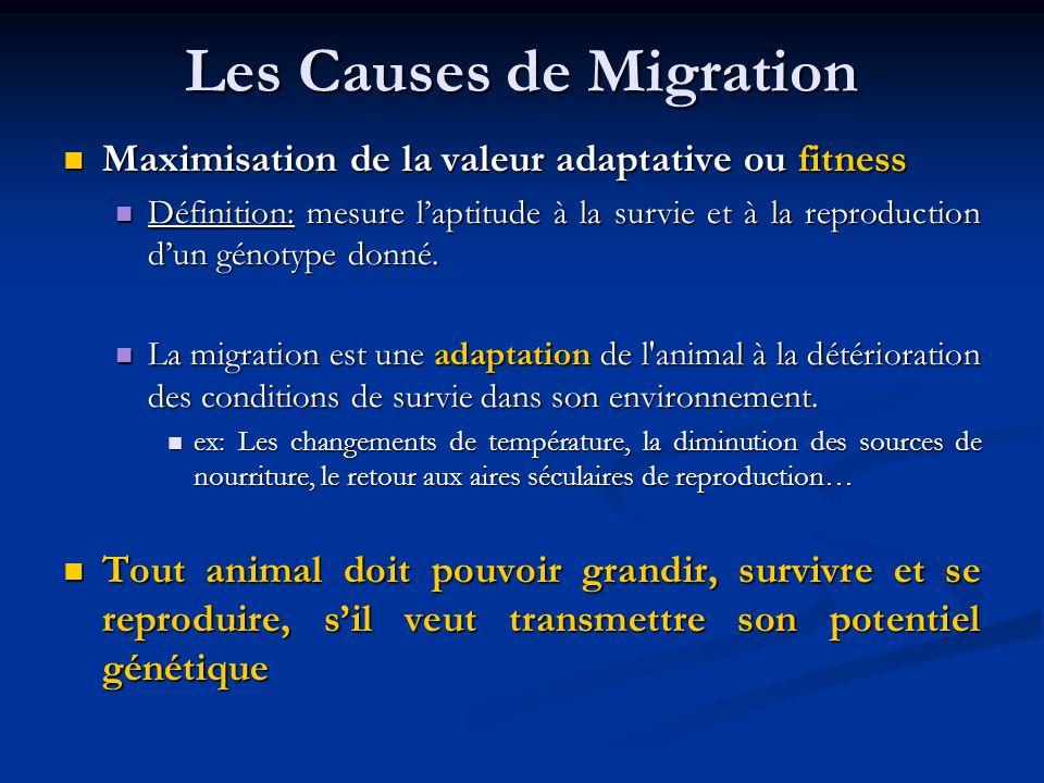 Les Causes de Migration Maximisation de la valeur adaptative ou fitness Maximisation de la valeur adaptative ou fitness Définition:mesure laptitude à