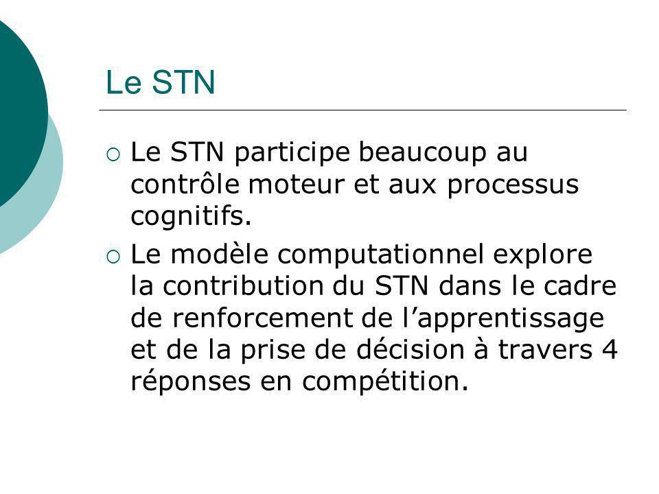 Le STN Le STN participe beaucoup au contrôle moteur et aux processus cognitifs. Le modèle computationnel explore la contribution du STN dans le cadre