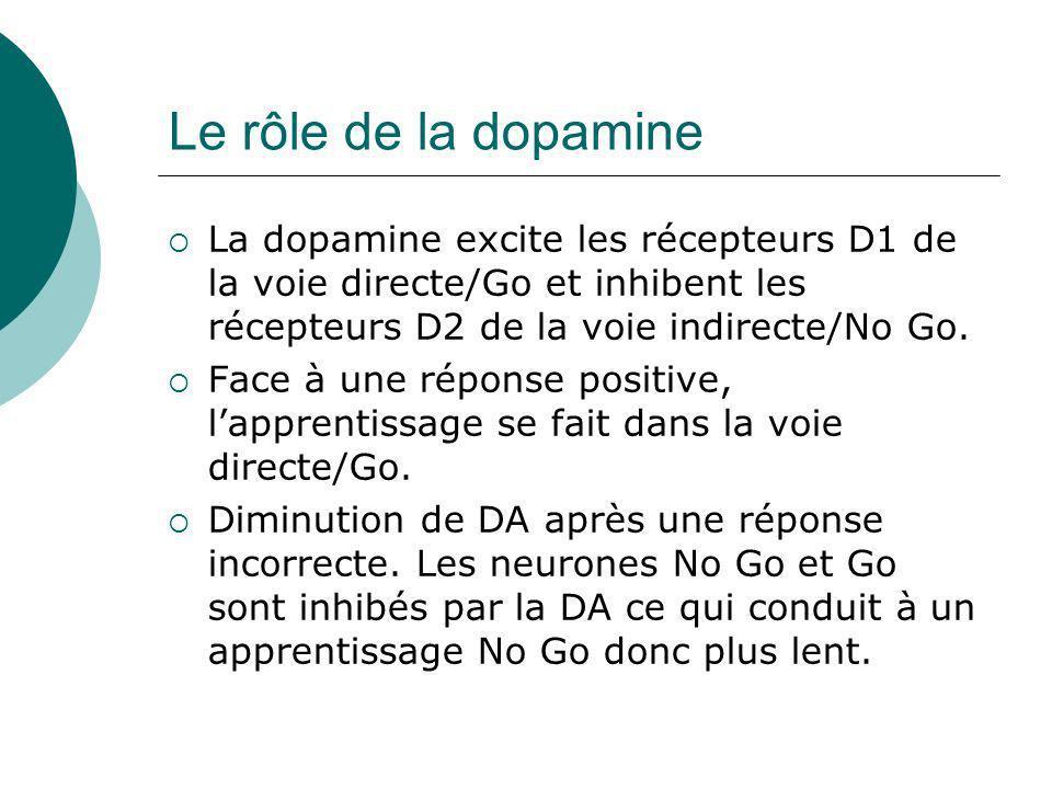Le rôle de la dopamine La dopamine excite les récepteurs D1 de la voie directe/Go et inhibent les récepteurs D2 de la voie indirecte/No Go. Face à une