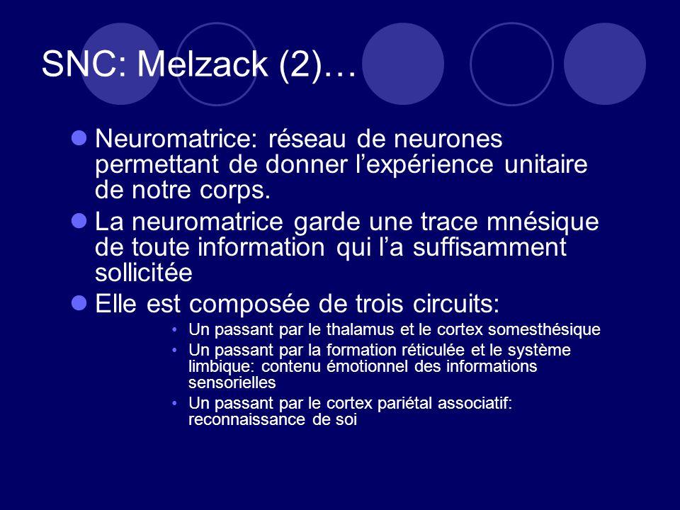 SNC: Melzack (2)… Neuromatrice: réseau de neurones permettant de donner lexpérience unitaire de notre corps. La neuromatrice garde une trace mnésique