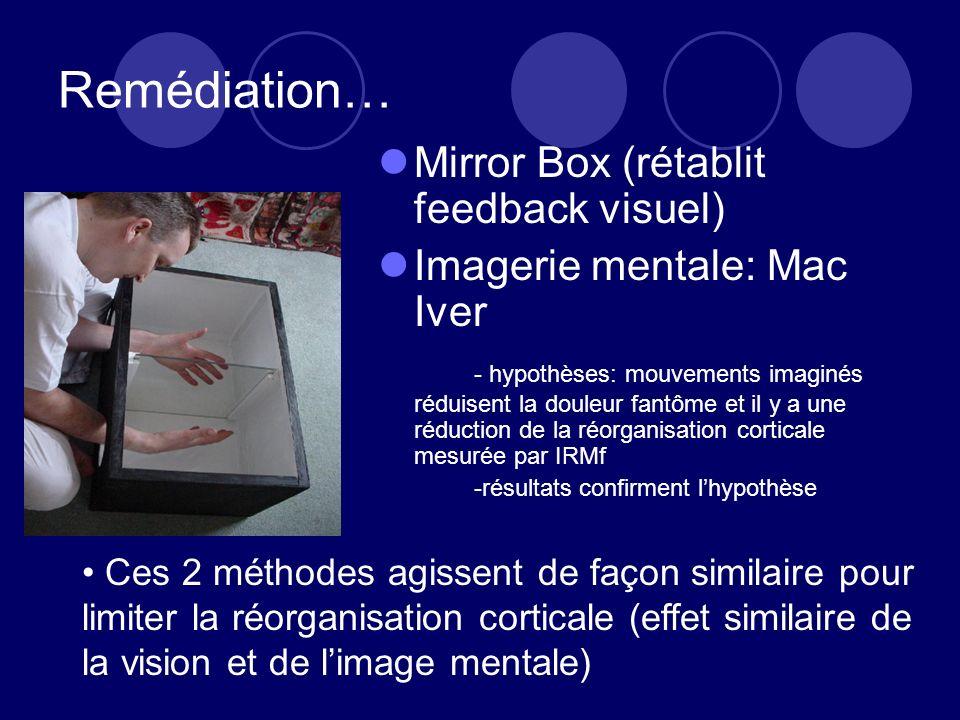 Remédiation… Mirror Box (rétablit feedback visuel) Imagerie mentale: Mac Iver - hypothèses: mouvements imaginés réduisent la douleur fantôme et il y a une réduction de la réorganisation corticale mesurée par IRMf -résultats confirment lhypothèse Ces 2 méthodes agissent de façon similaire pour limiter la réorganisation corticale (effet similaire de la vision et de limage mentale)