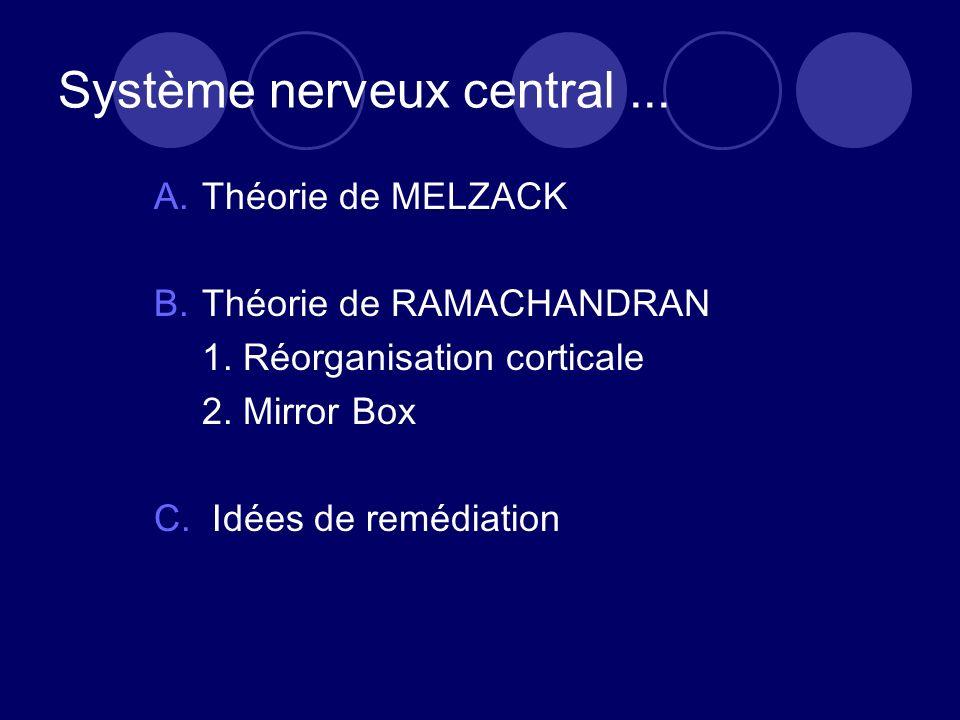 Système nerveux central... A.Théorie de MELZACK B.Théorie de RAMACHANDRAN 1. Réorganisation corticale 2. Mirror Box C. Idées de remédiation