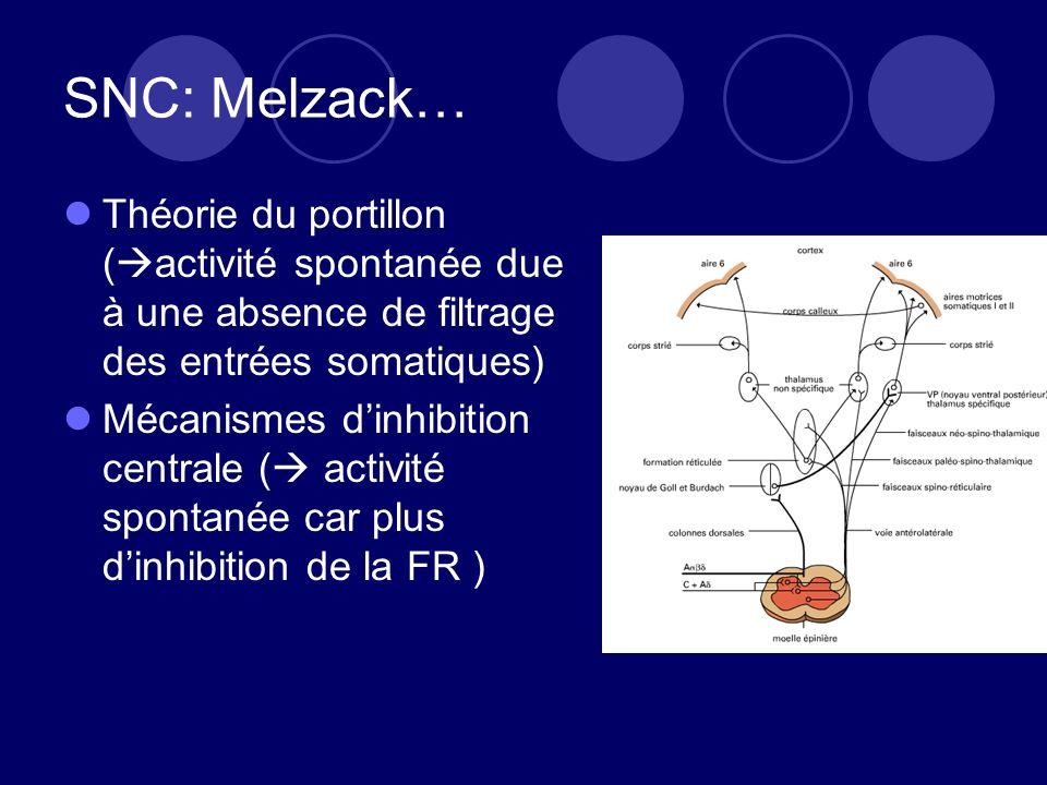 SNC: Melzack… Théorie du portillon ( activité spontanée due à une absence de filtrage des entrées somatiques) Mécanismes dinhibition centrale ( activité spontanée car plus dinhibition de la FR )