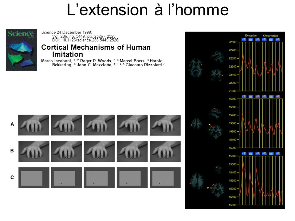 Lextension à lhomme Science 24 December 1999: Vol.