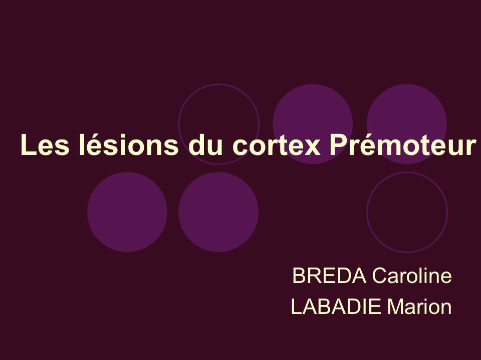 Les lésions du cortex Prémoteur BREDA Caroline LABADIE Marion