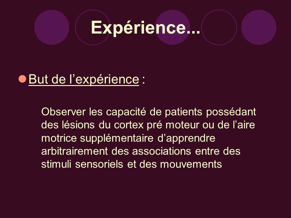 Expérience... But de lexpérience : Observer les capacité de patients possédant des lésions du cortex pré moteur ou de laire motrice supplémentaire dap