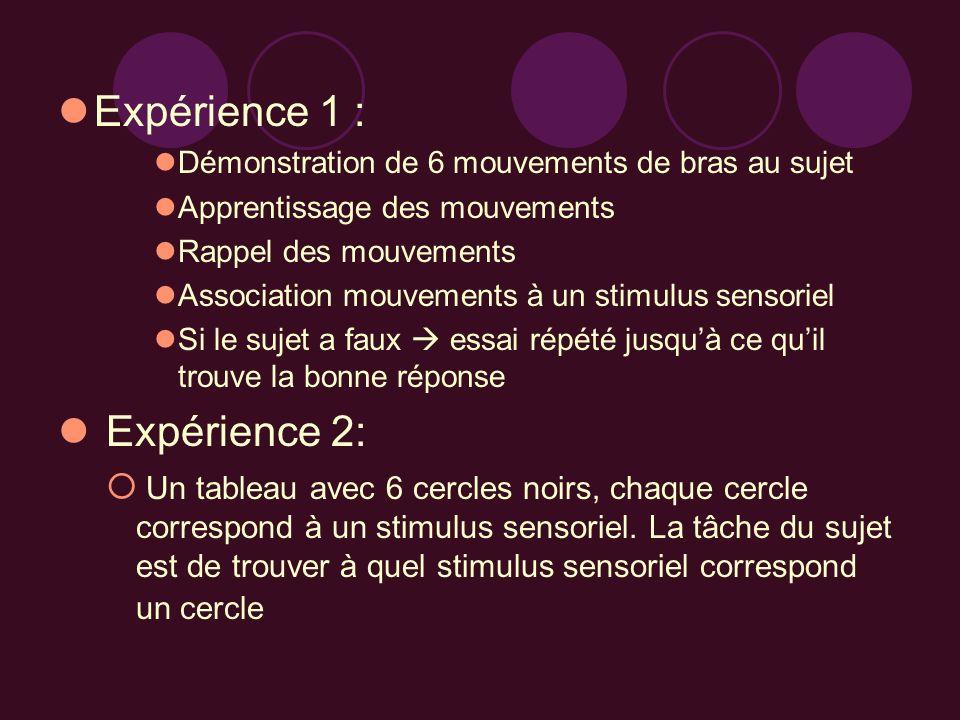 Expérience 1 : Démonstration de 6 mouvements de bras au sujet Apprentissage des mouvements Rappel des mouvements Association mouvements à un stimulus