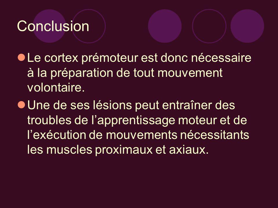 Conclusion Le cortex prémoteur est donc nécessaire à la préparation de tout mouvement volontaire. Une de ses lésions peut entraîner des troubles de la
