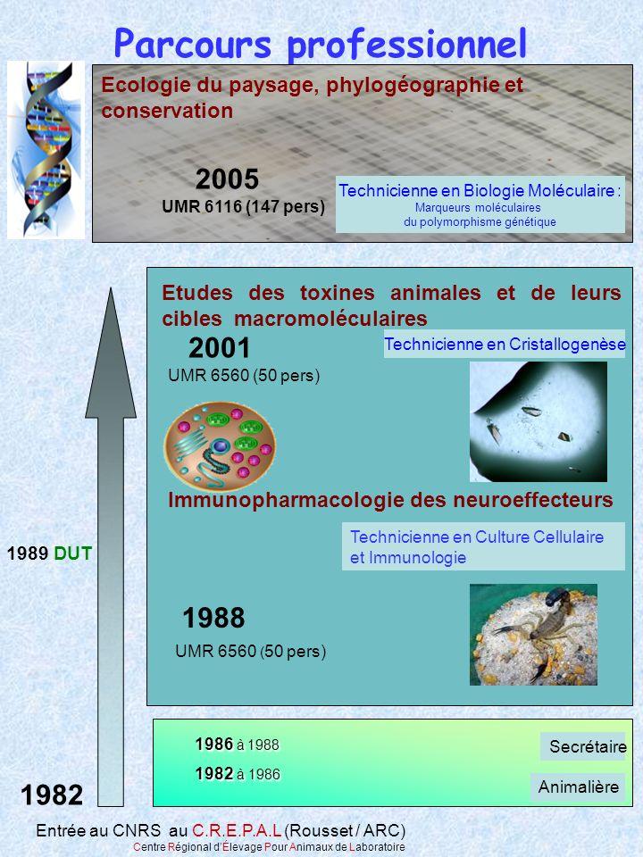 1982 à 1986 Technicienne en Culture Cellulaire et Immunologie Technicienne en Cristallogenèse 1988 2001 UMR 6560 ( 50 pers) 1989 DUT Parcours professi