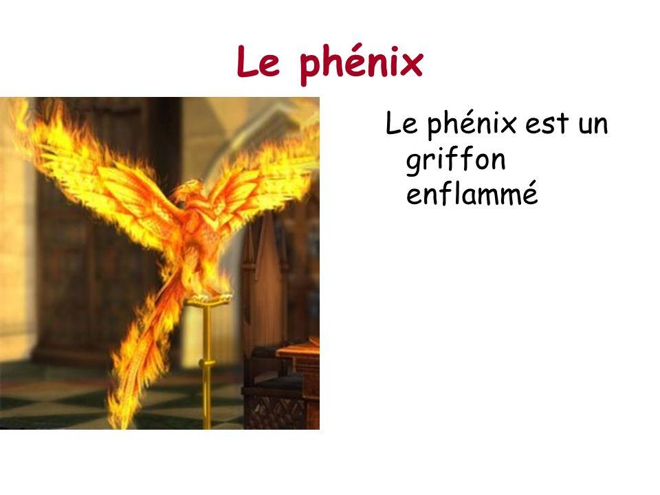 Le phénix Le phénix est un griffon enflammé