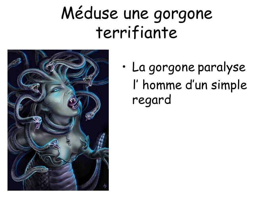 Méduse une gorgone terrifiante La gorgone paralyse l homme dun simple regard
