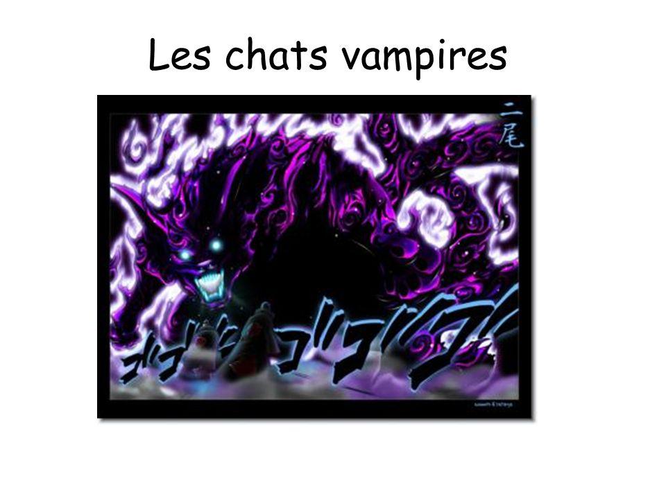 Les chats vampires