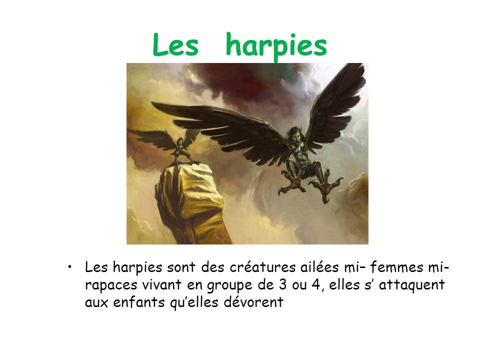 Les harpies Les harpies sont des créatures ailées mi– femmes mi- rapaces vivant en groupe de 3 ou 4, elles s attaquent aux enfants quelles dévorent