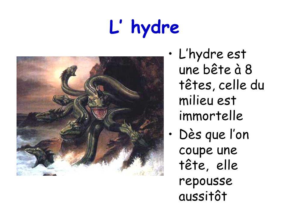 L hydre Lhydre est une bête à 8 têtes, celle du milieu est immortelle Dès que lon coupe une tête, elle repousse aussitôt