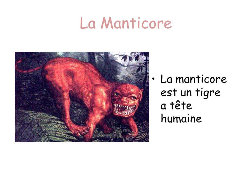 La Manticore La manticore est un tigre a tête humaine