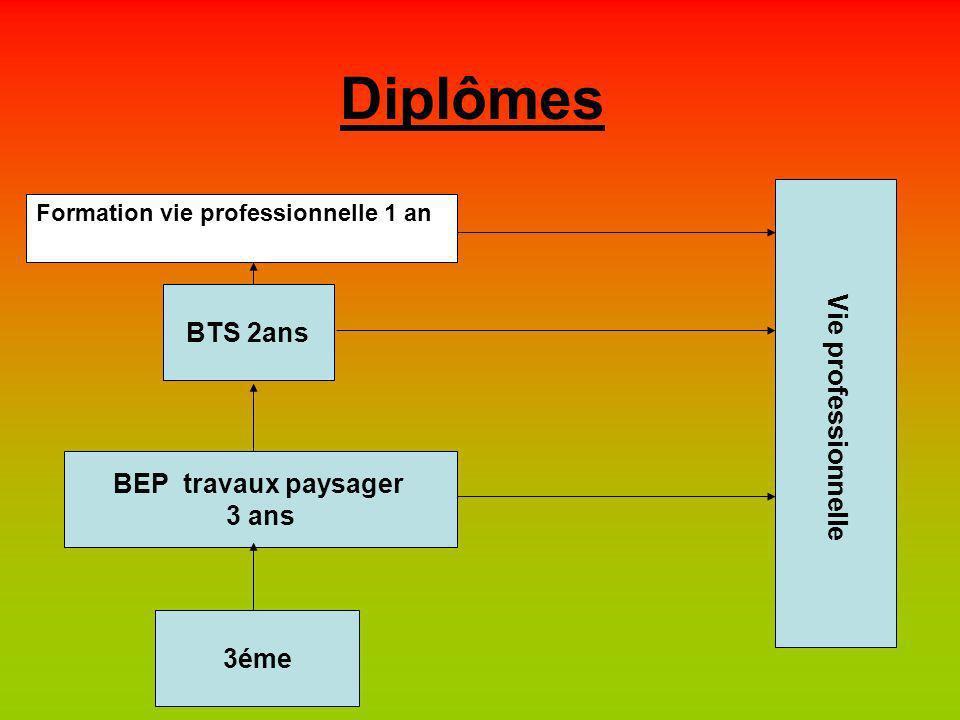 Diplômes 3éme BEP travaux paysager 3 ans BTS 2ans Vie professionnelle Formation vie professionnelle 1 an