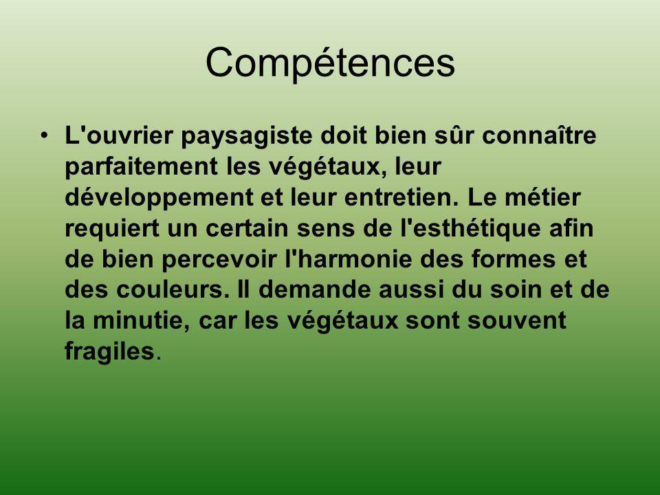 Compétences L'ouvrier paysagiste doit bien sûr connaître parfaitement les végétaux, leur développement et leur entretien. Le métier requiert un certai