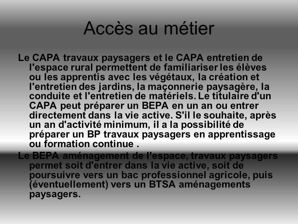 Accès au métier Le CAPA travaux paysagers et le CAPA entretien de l'espace rural permettent de familiariser les élèves ou les apprentis avec les végét