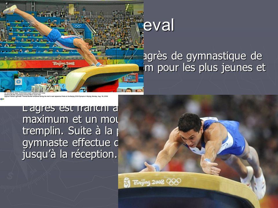 2.4 Le saut de cheval Le saut de cheval est un agrès de gymnastique de 1.35m de hauteur et 1.25m pour les plus jeunes et 40 cm de profondeur.