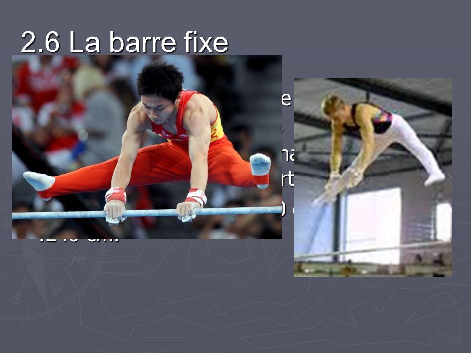 2.6 La barre fixe La barre fixe est constituée de métal et est tenue entre deux poteaux.