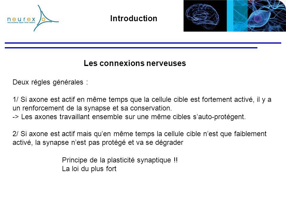 Deux régles générales : 1/ Si axone est actif en même temps que la cellule cible est fortement activé, il y a un renforcement de la synapse et sa cons