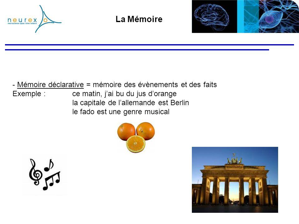 La Mémoire - Mémoire déclarative = mémoire des évènements et des faits Exemple : ce matin, jai bu du jus dorange la capitale de lallemande est Berlin