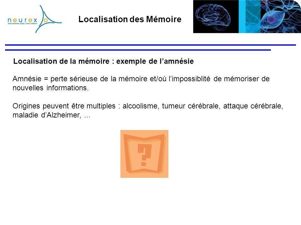 Localisation de la mémoire : exemple de lamnésie Amnésie = perte sérieuse de la mémoire et/où limpossiblité de mémoriser de nouvelles informations. Or