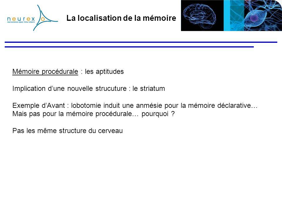 La localisation de la mémoire Mémoire procédurale : les aptitudes Implication dune nouvelle strucuture : le striatum Exemple dAvant : lobotomie induit