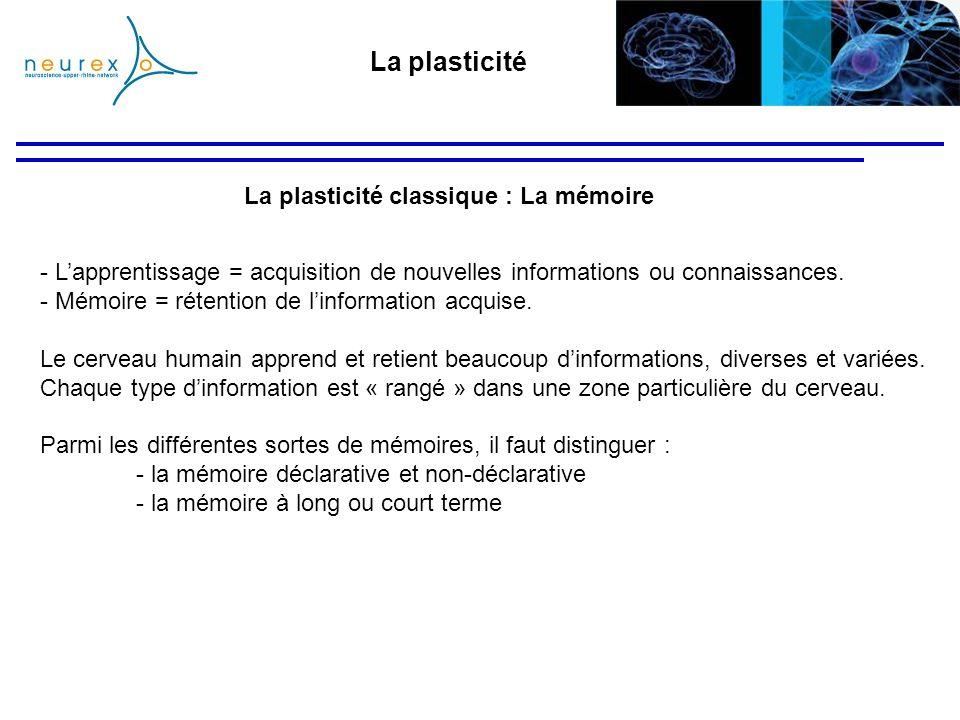 La plasticité classique : La mémoire - Lapprentissage = acquisition de nouvelles informations ou connaissances. - Mémoire = rétention de linformation