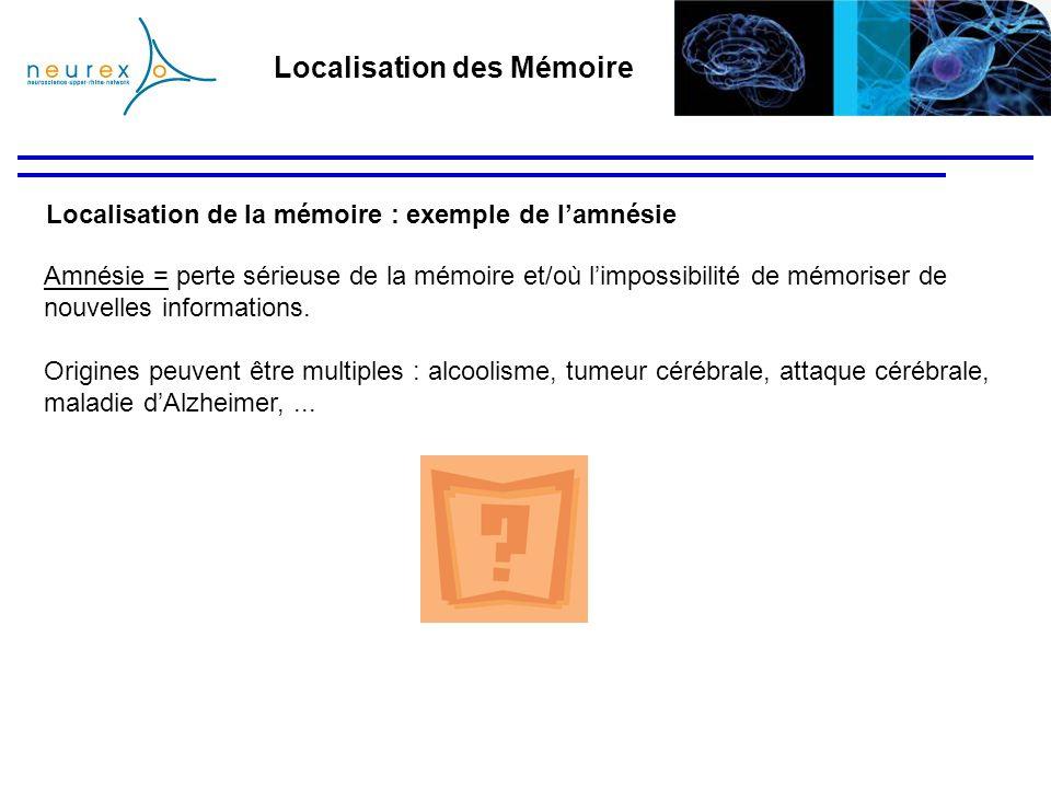 Localisation de la mémoire : exemple de lamnésie Amnésie = perte sérieuse de la mémoire et/où limpossibilité de mémoriser de nouvelles informations. O