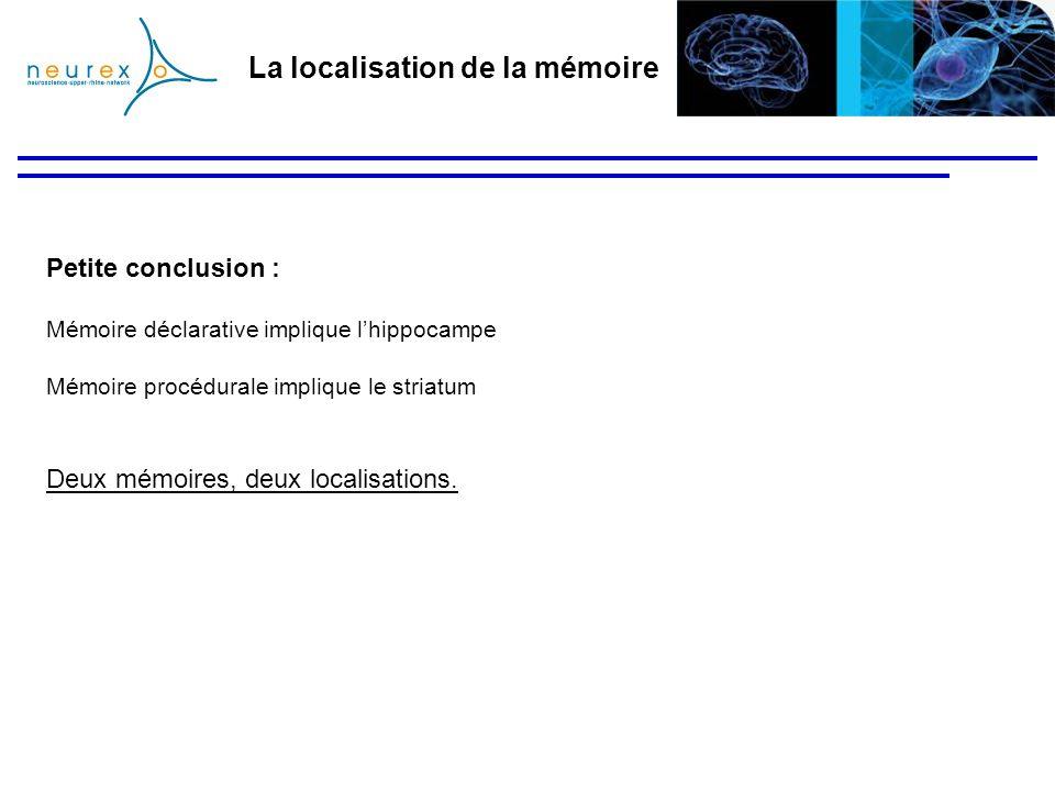 La localisation de la mémoire Petite conclusion : Mémoire déclarative implique lhippocampe Mémoire procédurale implique le striatum Deux mémoires, deu